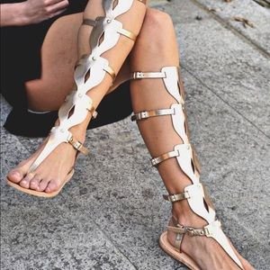 Meraki Oplitis Knee High Gladiator Sandals Gold